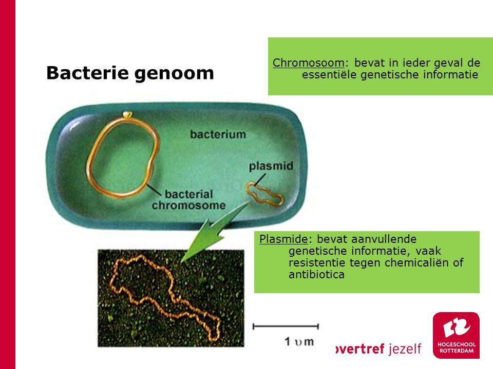 Chromosoom: bevat in ieder geval de essentiële genetische informatie
