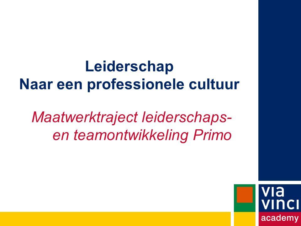 Leiderschap Naar een professionele cultuur