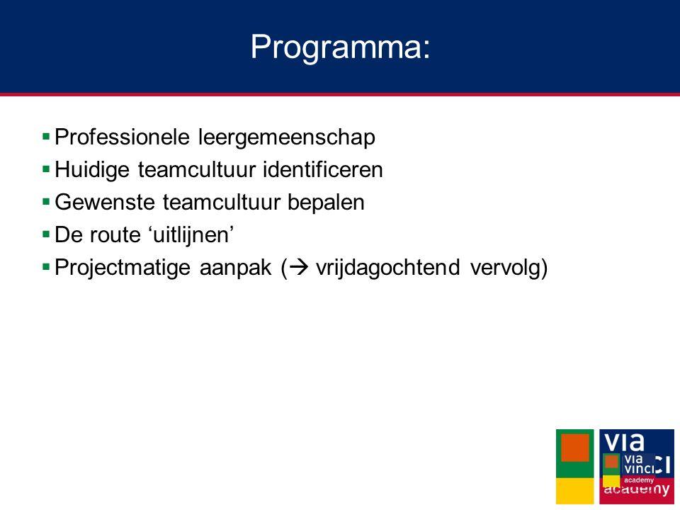 Programma: Professionele leergemeenschap