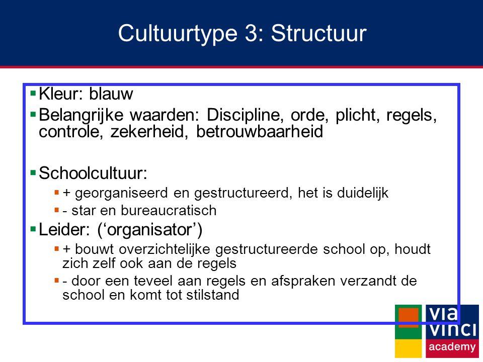 Cultuurtype 3: Structuur