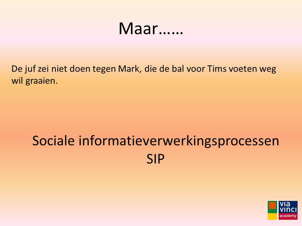 Sociale informatieverwerkingsprocessen