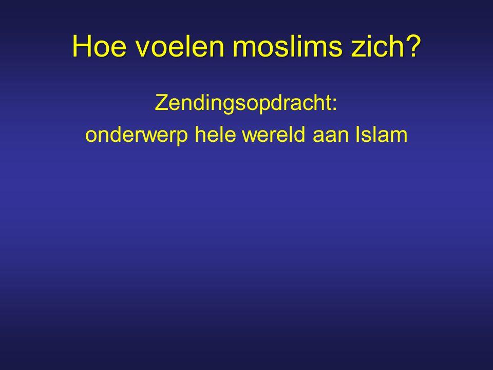 Hoe voelen moslims zich
