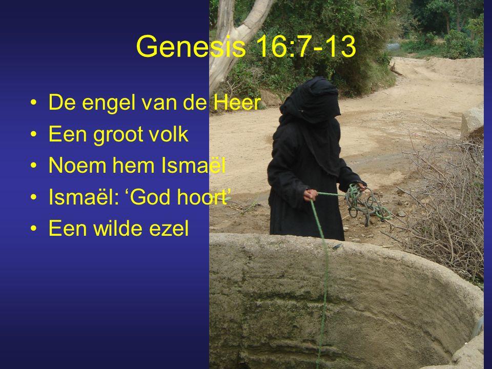 Genesis 16:7-13 De engel van de Heer Een groot volk Noem hem Ismaël