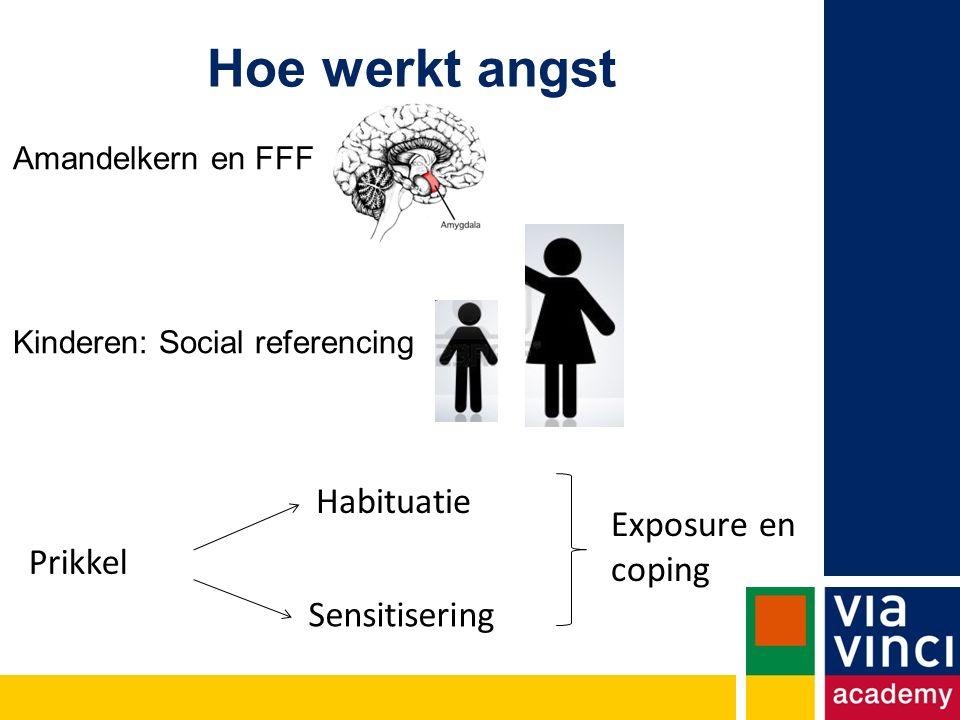 Amandelkern en FFF Kinderen: Social referencing