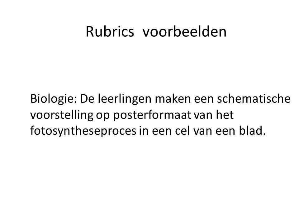 Rubrics voorbeelden Biologie: De leerlingen maken een schematische voorstelling op posterformaat van het fotosyntheseproces in een cel van een blad.