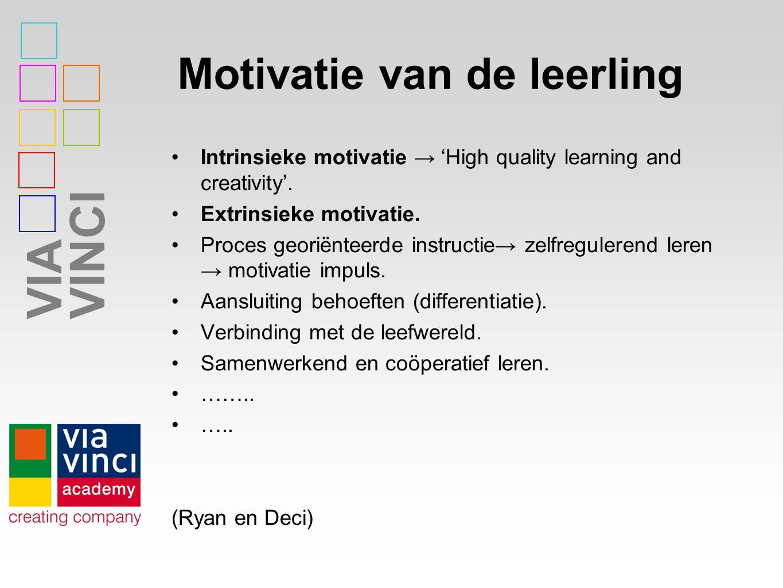Motivatie van de leerling