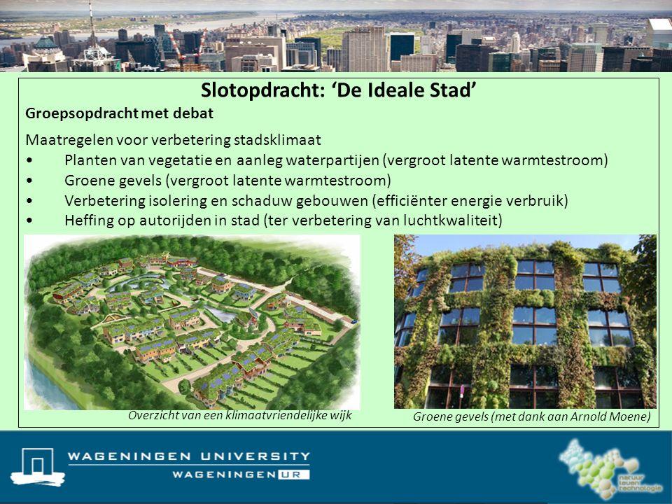 Slotopdracht: 'De Ideale Stad'