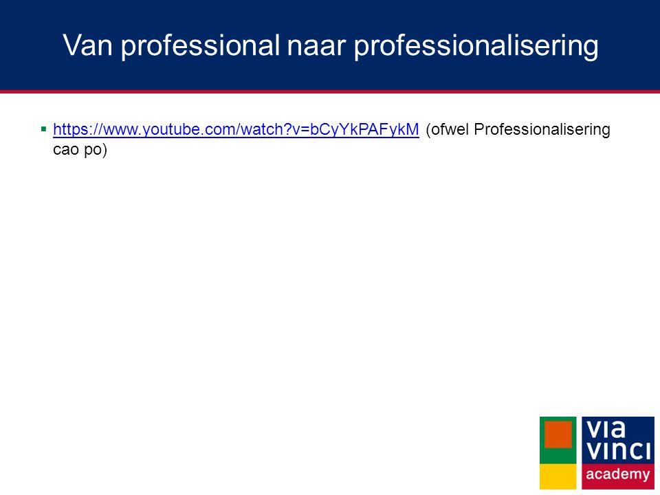 Van professional naar professionalisering