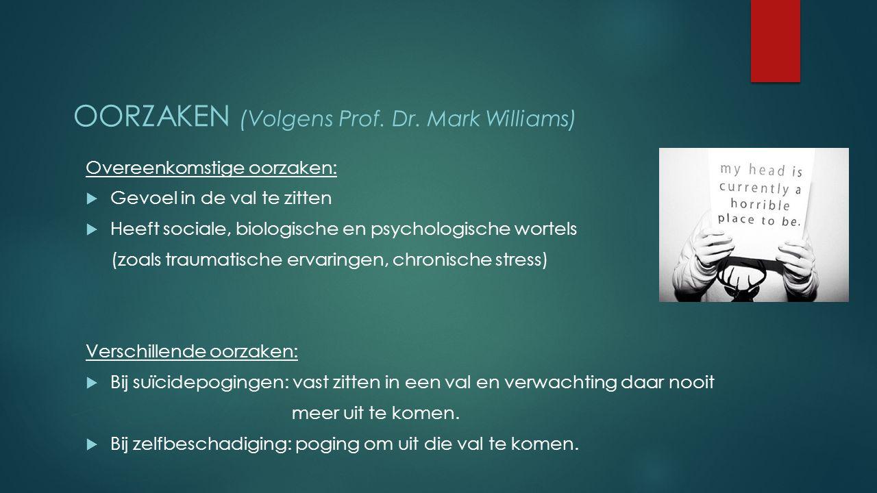 Oorzaken (Volgens Prof. Dr. Mark Williams)