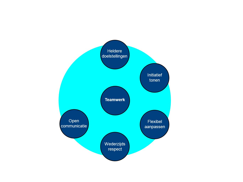 Heldere doelstellingen. Initiatief. tonen. Teamwerk. Open. communicatie. Flexibel. aanpassen.