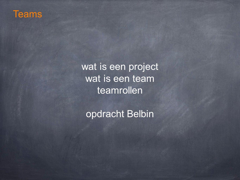 Teams wat is een project wat is een team teamrollen opdracht Belbin