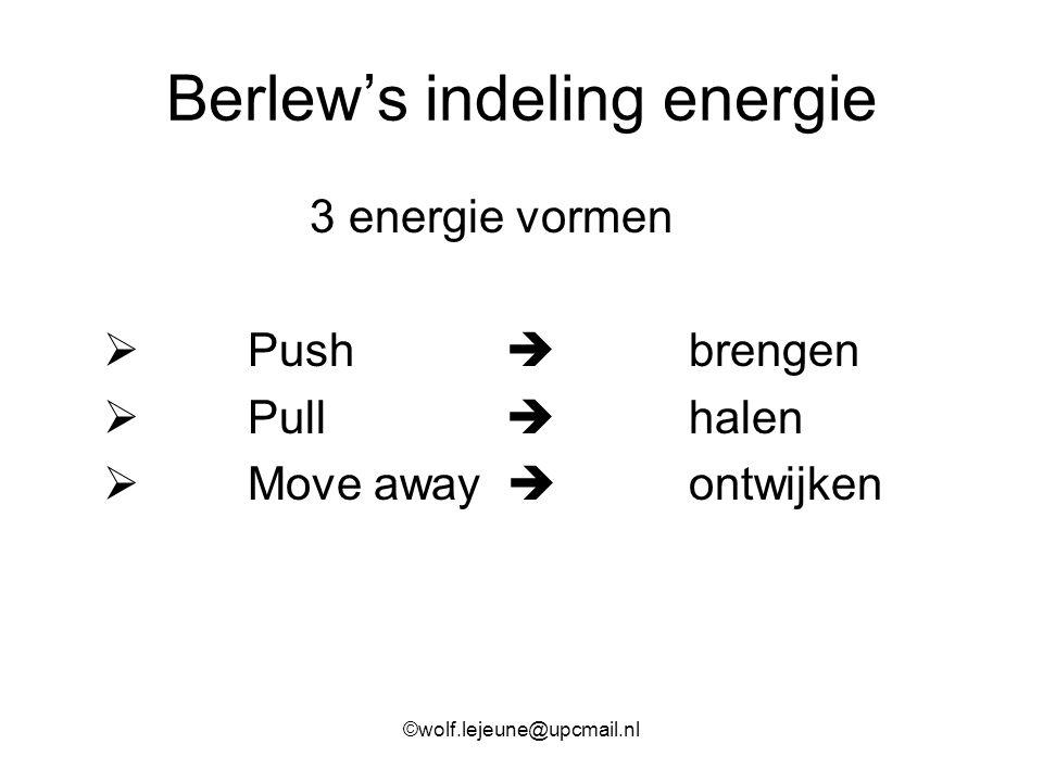 Berlew's indeling energie