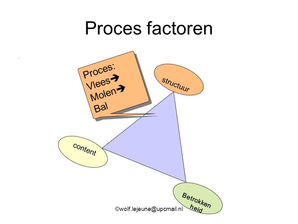Proces factoren Proces: Vlees Molen Bal structuur content Betrokken