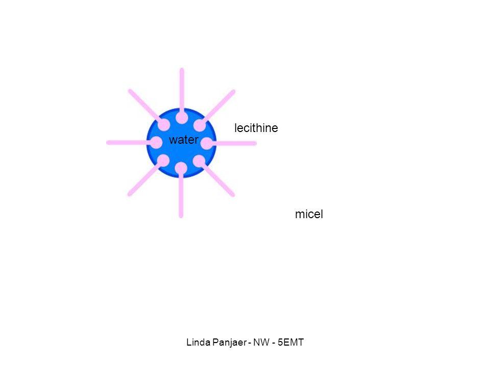 lecithine water micel Linda Panjaer - NW - 5EMT