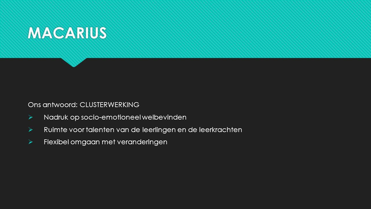MACARIUS Ons antwoord: CLUSTERWERKING
