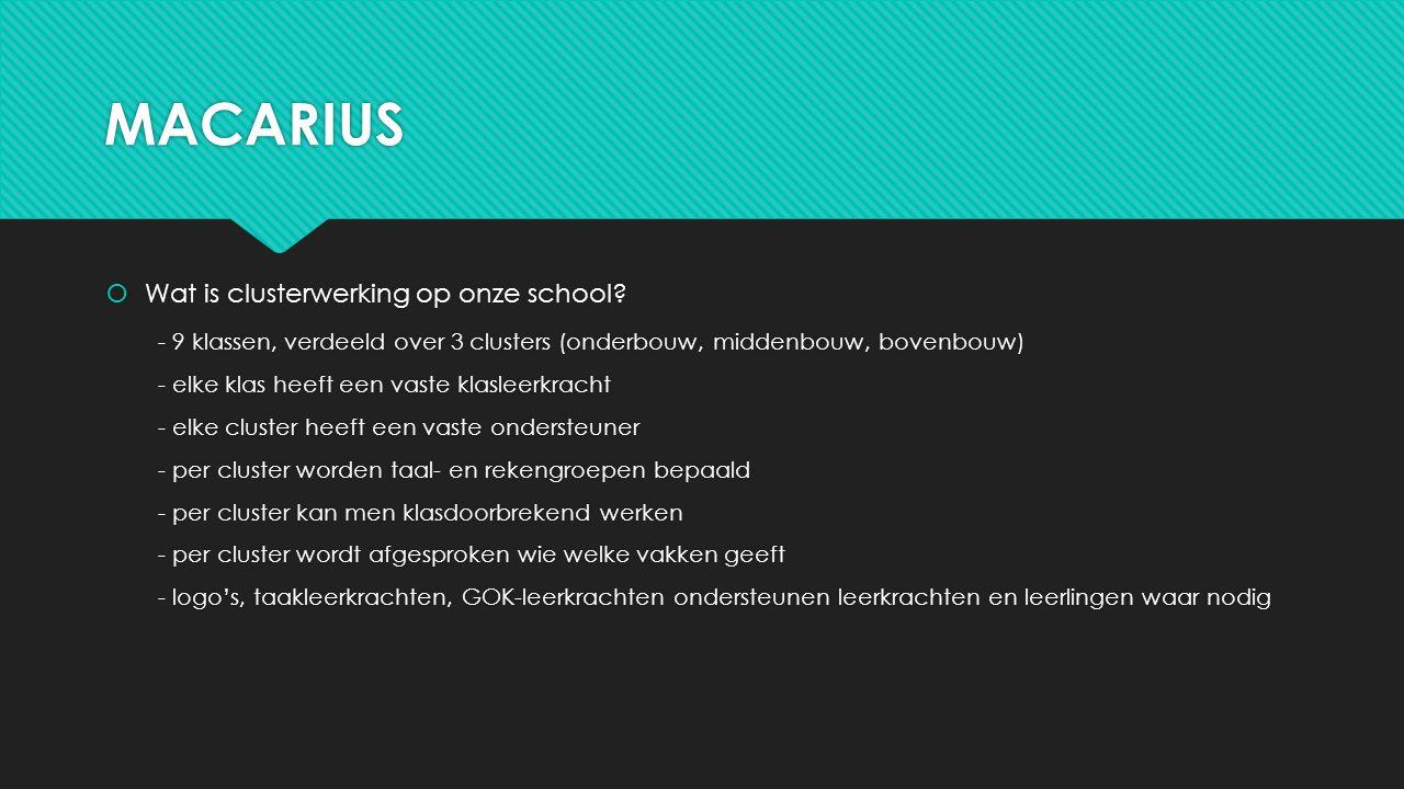 MACARIUS Wat is clusterwerking op onze school