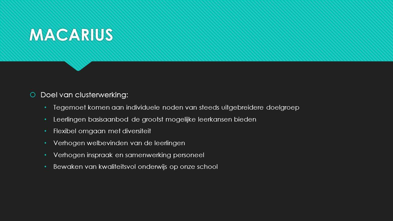 MACARIUS Doel van clusterwerking: