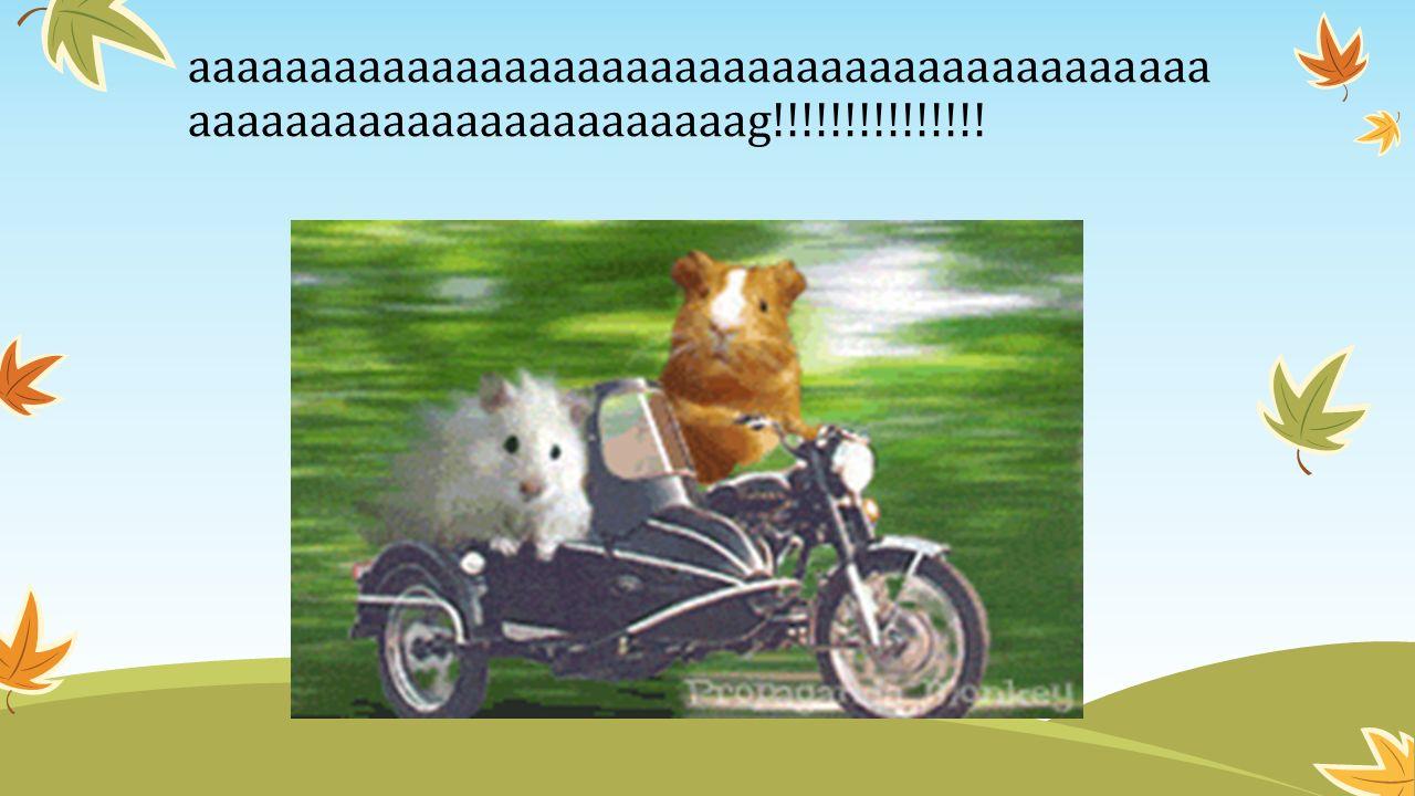 aaaaaaaaaaaaaaaaaaaaaaaaaaaaaaaaaaaaaaaaaaaaaaaaaaaaaaaaaaaaaaaaag!!!!!!!!!!!!!!!