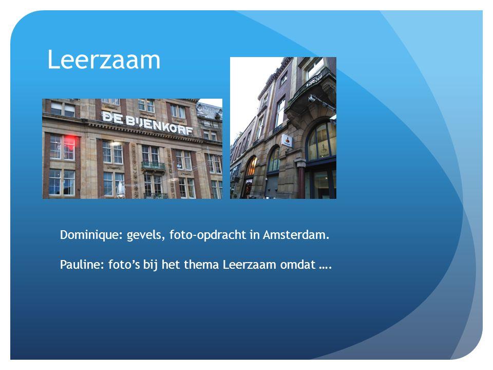 Leerzaam Dominique: gevels, foto-opdracht in Amsterdam.