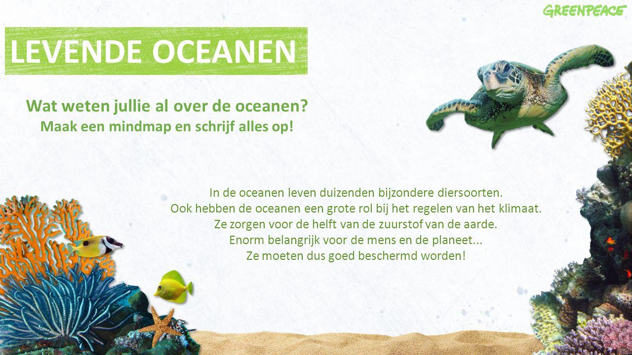 LEVENDE OCEANEN Wat weten jullie al over de oceanen Maak een mindmap en schrijf alles op! In de oceanen leven duizenden bijzondere diersoorten.