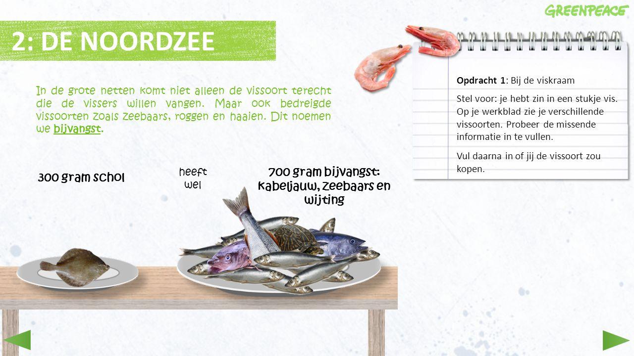 700 gram bijvangst: kabeljauw, zeebaars en wijting