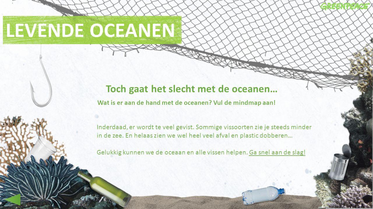 Wat is er aan de hand met de oceanen Vul de mindmap aan!
