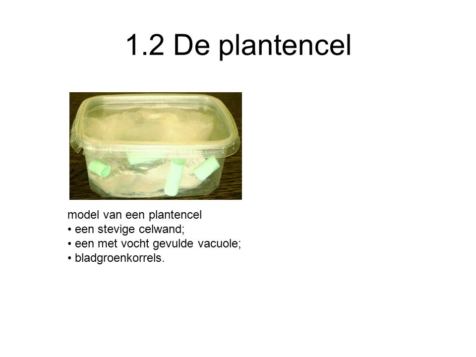 1.2 De plantencel model van een plantencel een stevige celwand;