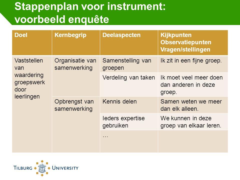 Stappenplan voor instrument: voorbeeld enquête