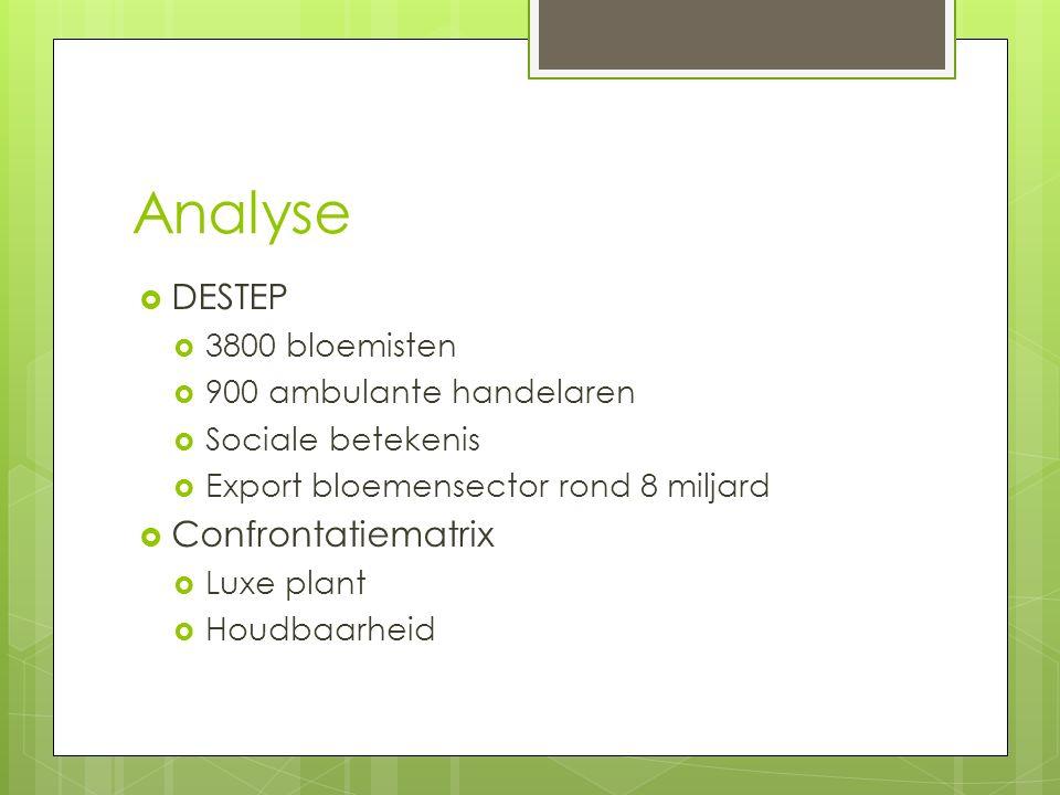 Analyse DESTEP Confrontatiematrix 3800 bloemisten