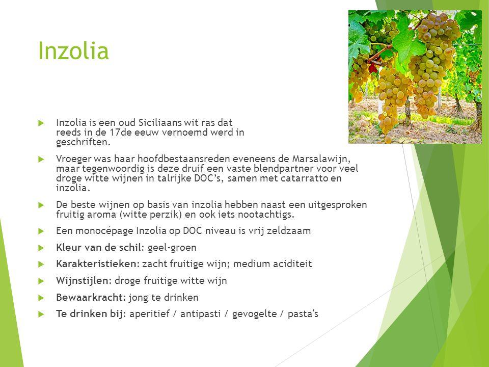 Inzolia Inzolia is een oud Siciliaans wit ras dat reeds in de 17de eeuw vernoemd werd in geschriften.