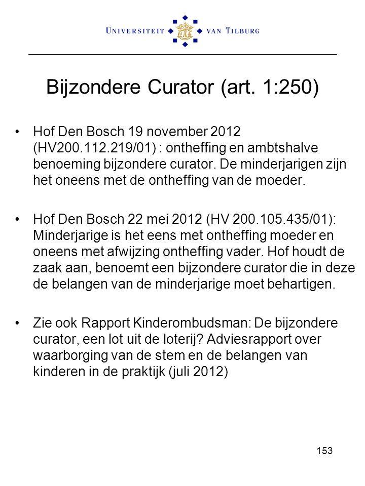 Bijzondere Curator (art. 1:250)