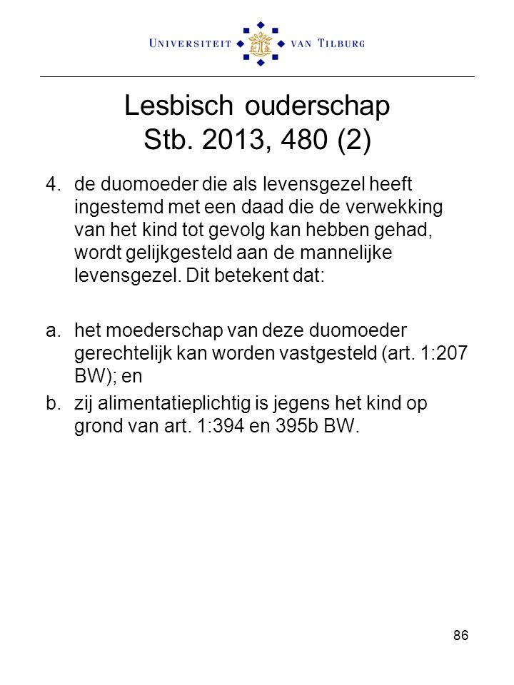 Lesbisch ouderschap Stb. 2013, 480 (2)