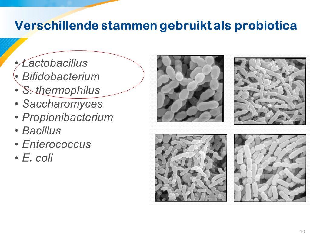 Probiotics: hoe werkt het
