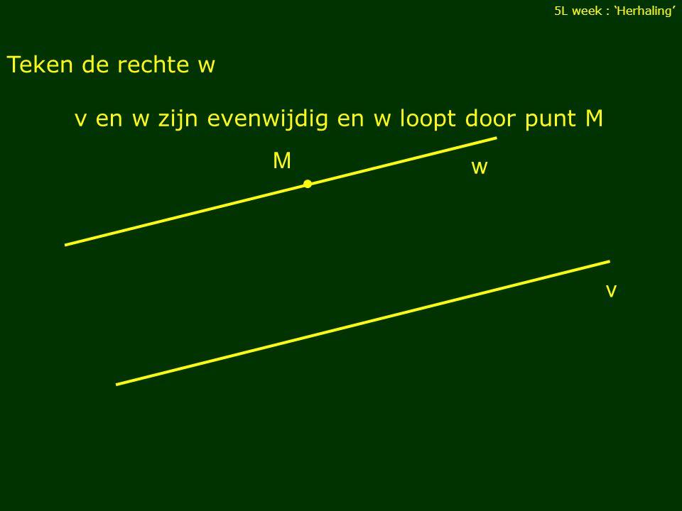 v en w zijn evenwijdig en w loopt door punt M