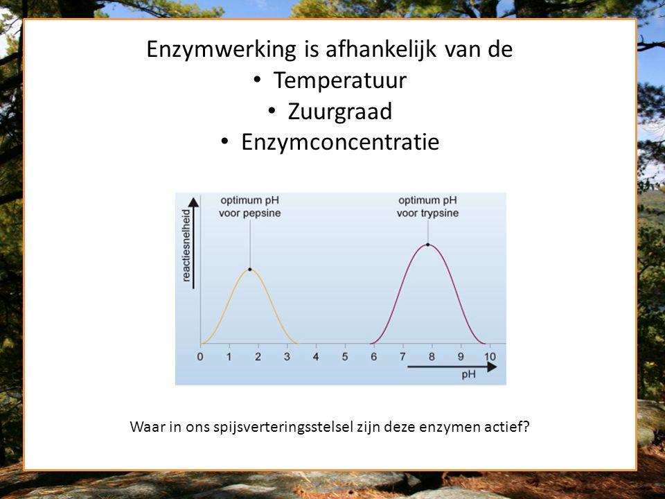 Enzymwerking is afhankelijk van de Temperatuur Zuurgraad