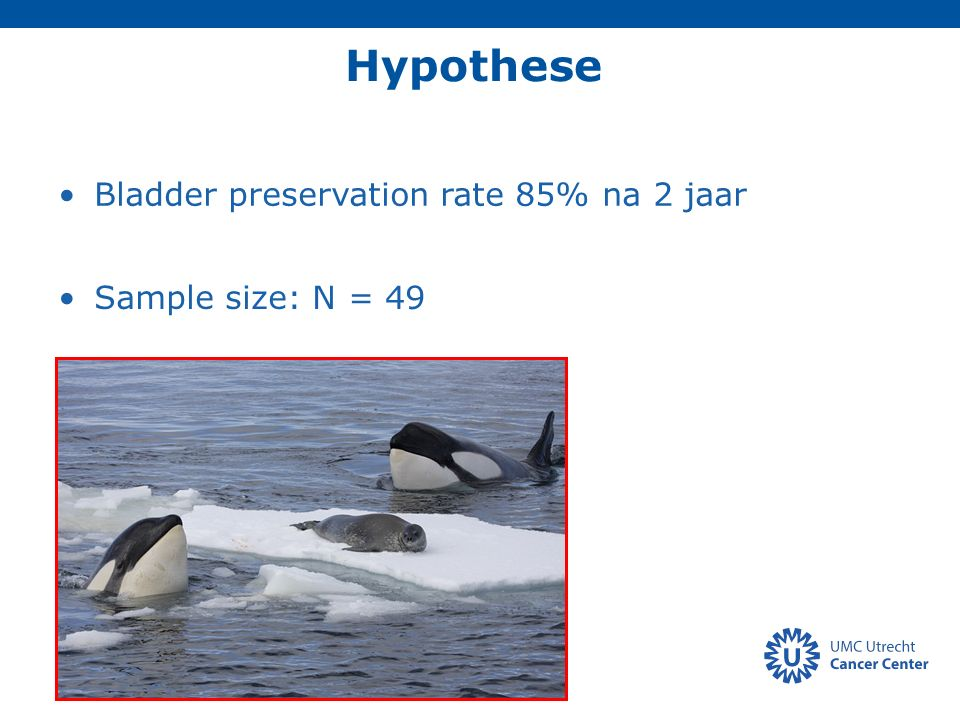 Hypothese Bladder preservation rate 85% na 2 jaar Sample size: N = 49