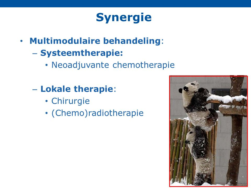 Synergie Multimodulaire behandeling: Systeemtherapie: