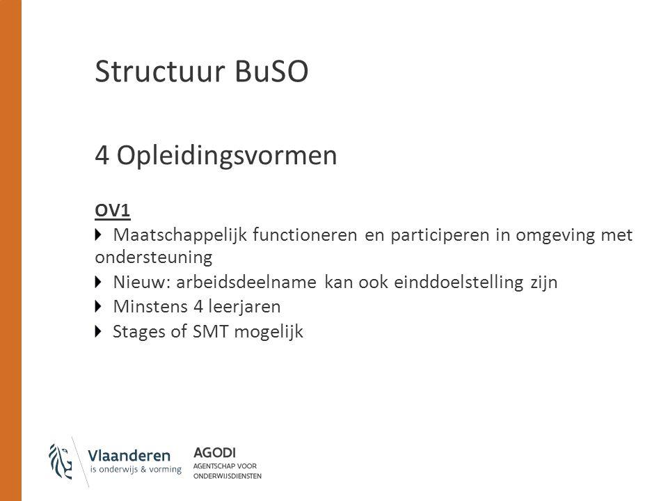Structuur BuSO 4 Opleidingsvormen OV1