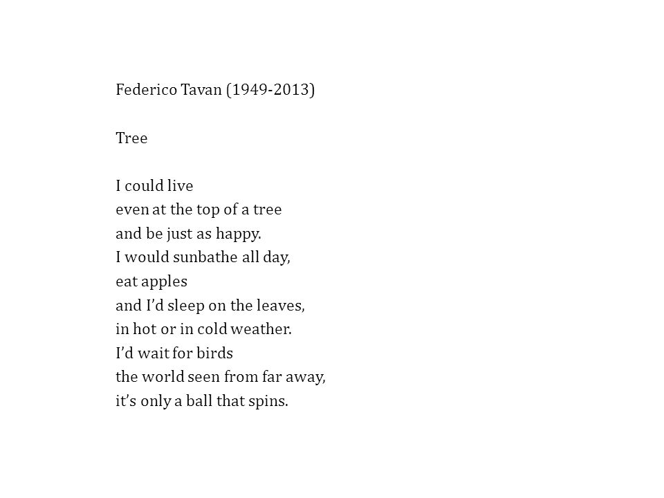 Federico Tavan (1949-2013) Tree. I could live. even at the top of a tree. and be just as happy.