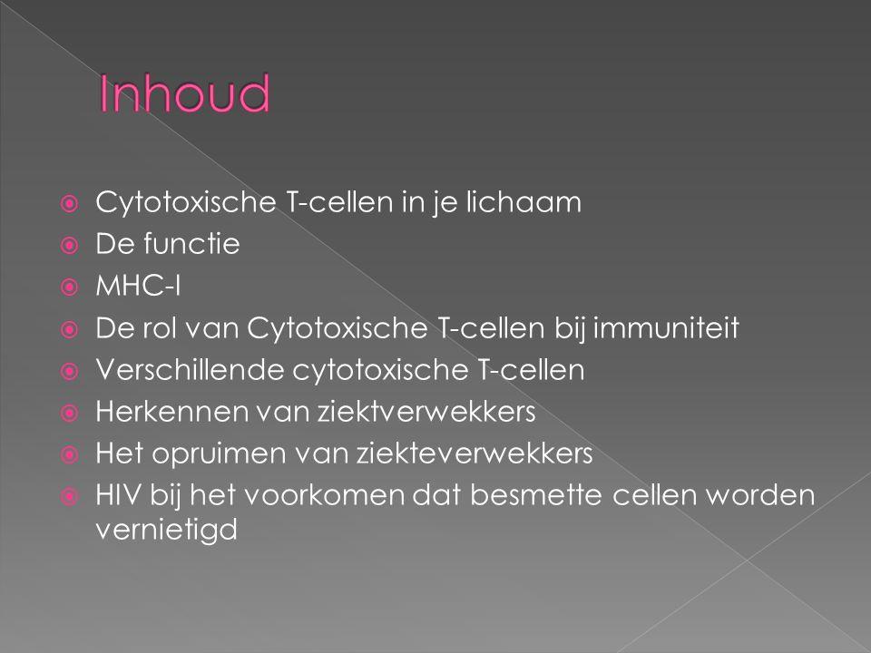 Inhoud Cytotoxische T-cellen in je lichaam De functie MHC-I