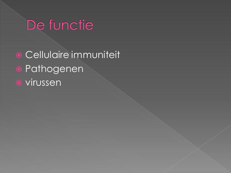 De functie Cellulaire immuniteit Pathogenen virussen