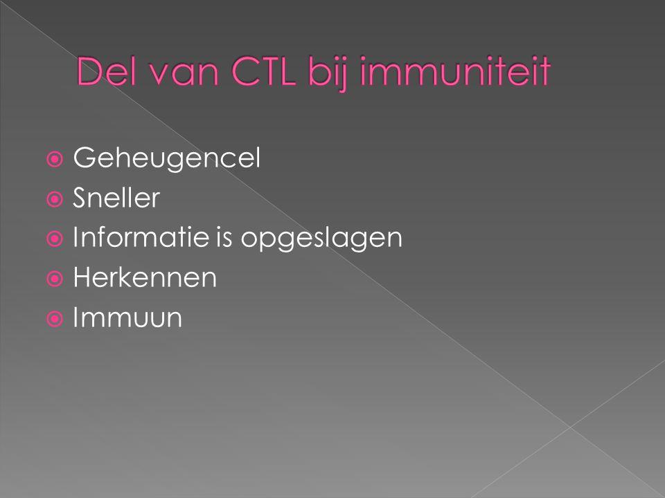 Del van CTL bij immuniteit