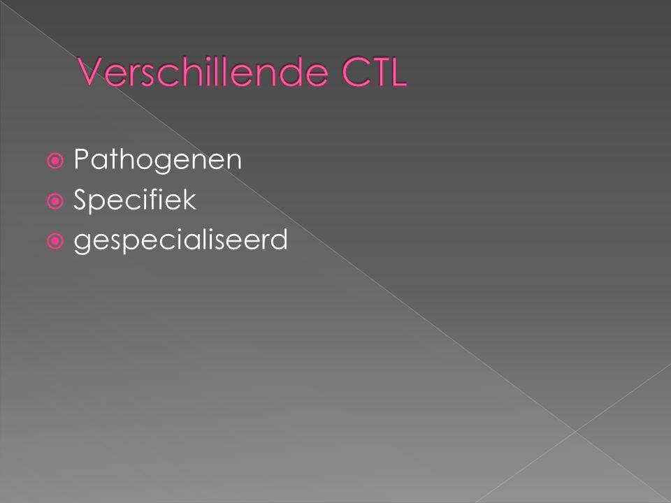 Verschillende CTL Pathogenen Specifiek gespecialiseerd