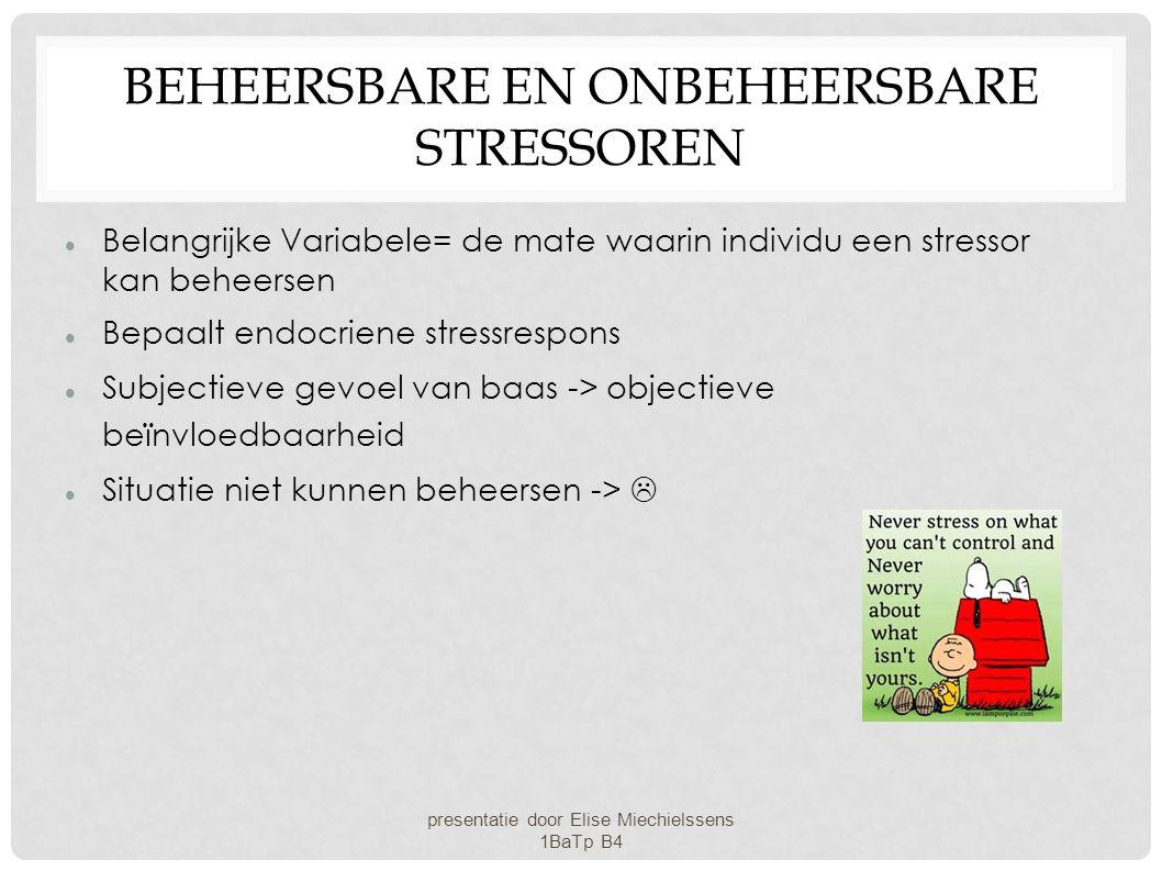 Beheersbare en onbeheersbare stressoren