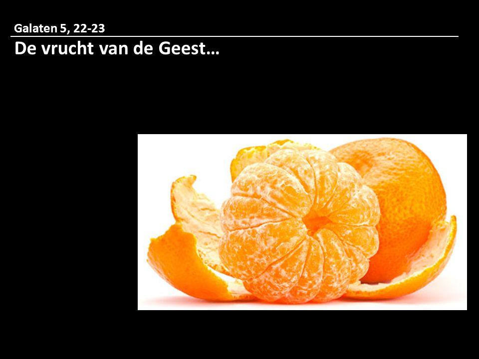 Galaten 5, 22-23 De vrucht van de Geest…