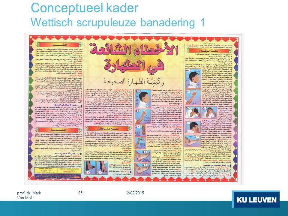 Conceptueel kader Wettisch scrupuleuze banadering 1