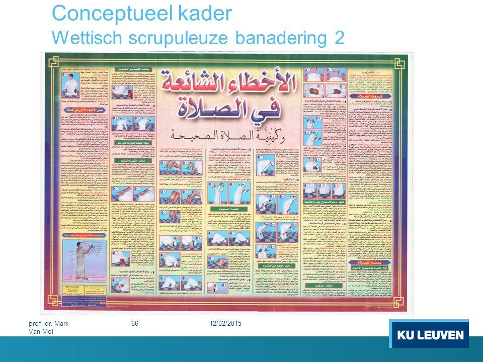 Conceptueel kader Wettisch scrupuleuze banadering 2