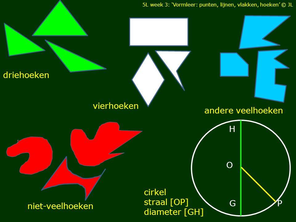 driehoeken andere veelhoeken vierhoeken niet-veelhoeken cirkel