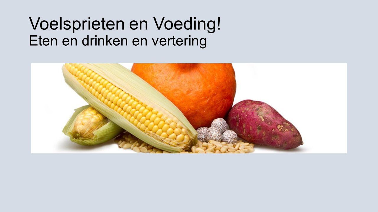 Voelsprieten en Voeding! Eten en drinken en vertering