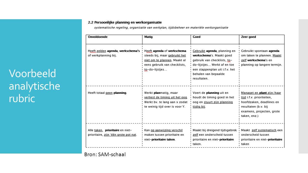 Voorbeeld analytische rubric